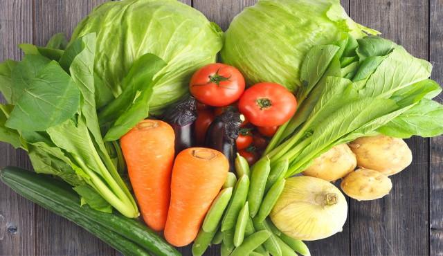 電解水の卸なら日本製の原料を使った「SHUPPA」~野菜の除菌や洗浄に使用することも可能~